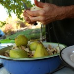 krojenie owoców